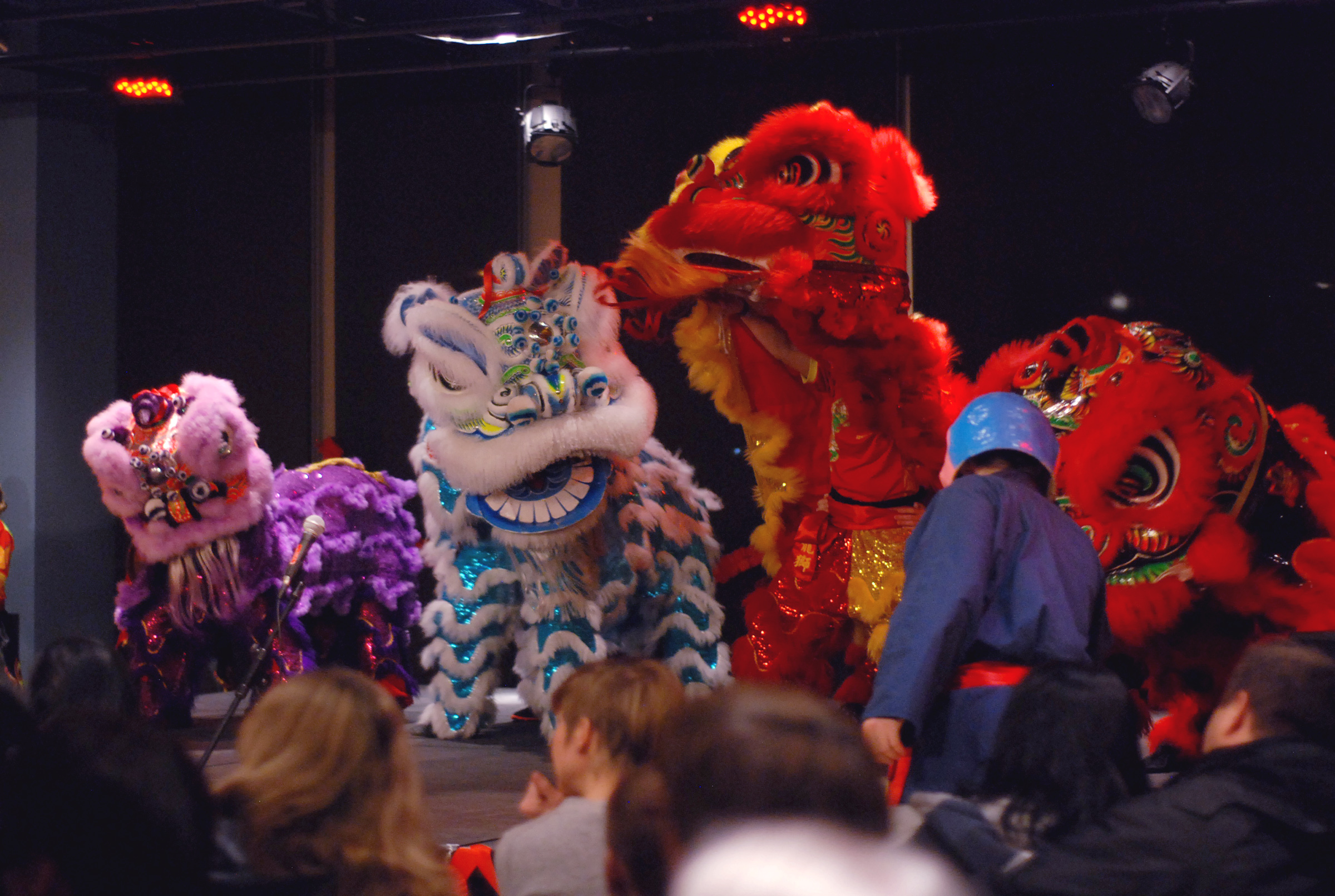 Lunar New Year showcases a wide variety of cultural